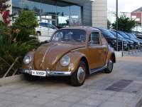 Volkswagen Beetle SKARAVEO 1965